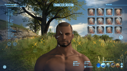 Hyur Highlander Hairstyle Options