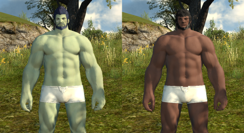 Roegadyn Clan Differences